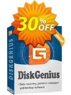 DiskGenius Professional Coupon discount 30%off P. Promotion: One sale OFF