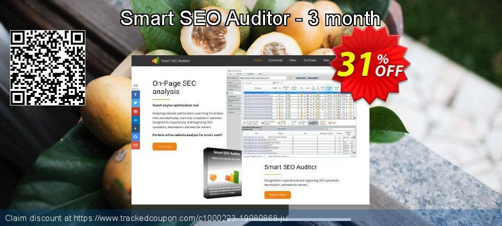Smart SEO Auditor - 3 month coupon on Mom Day super sale