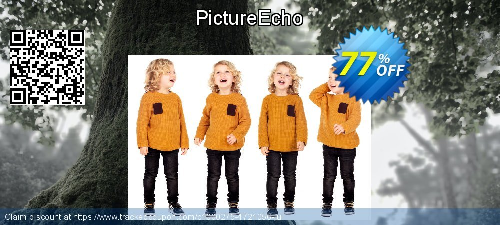 PictureEcho coupon on New Year discount