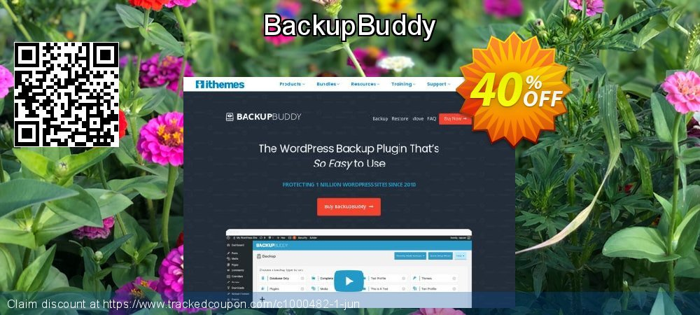BackupBuddy coupon on Summer offer