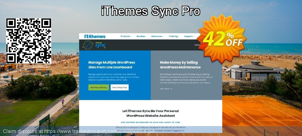 iThemes Sync Pro coupon on World Bicycle Day offering sales