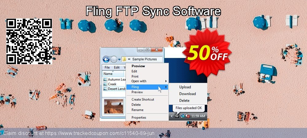 Fling FTP Sync Software coupon on New Year's Day sales