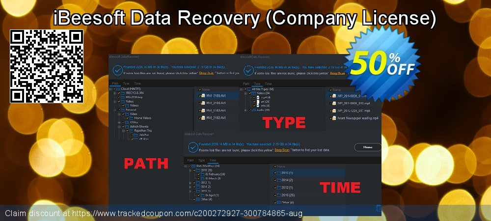 iBeesoft Data Recovery - Company License  coupon on New Year's Day promotions