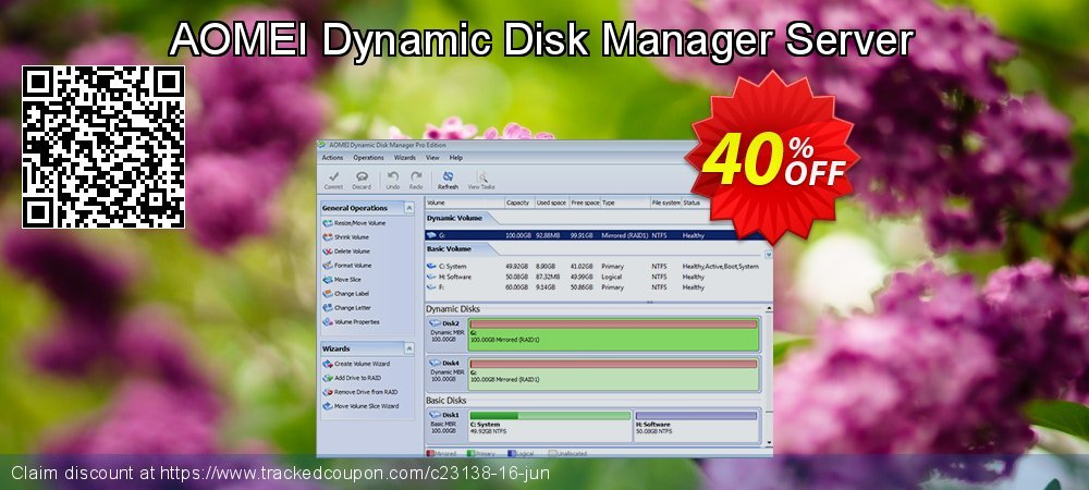 AOMEI Dynamic Disk Manager Server coupon on Halloween offering sales