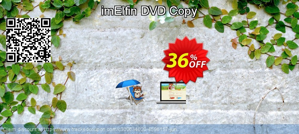 imElfin DVD Copy coupon on New Year's Day sales