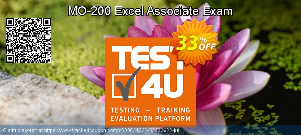 MO-200 Excel Associate Exam coupon on Happy New Year discount