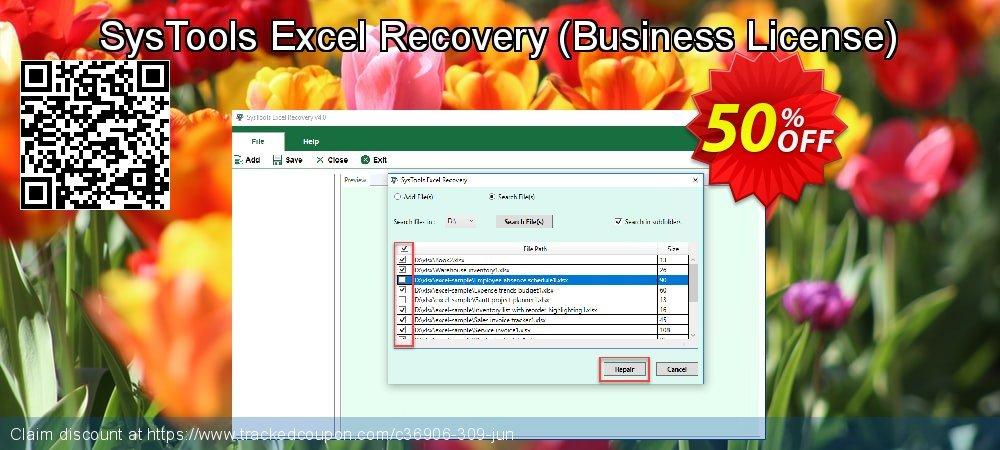 SysTools Excel Recovery - Business License  coupon on April Fool's Day deals
