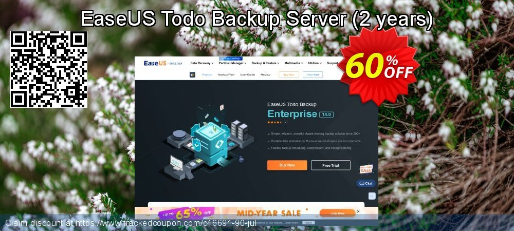 EaseUS Todo Backup Server - 2 years  coupon on Valentine Week promotions