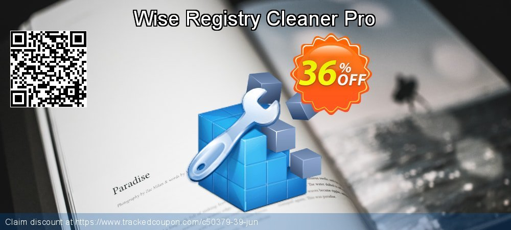 Wise Registry Cleaner Pro coupon on Valentine's Day sales