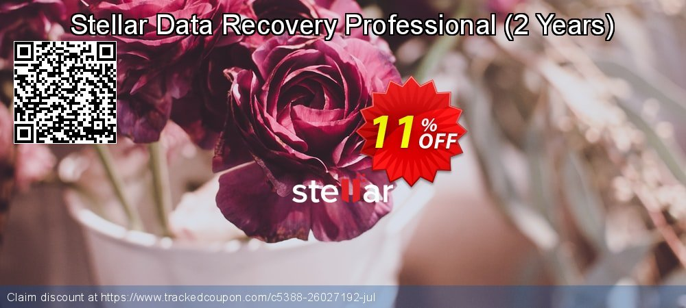 Claim 11% OFF Stellar Data Recovery Professional - 2 Years Coupon discount August, 2021