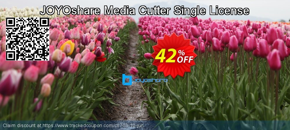 JOYOshare Media Cutter Single License coupon on Happy New Year sales