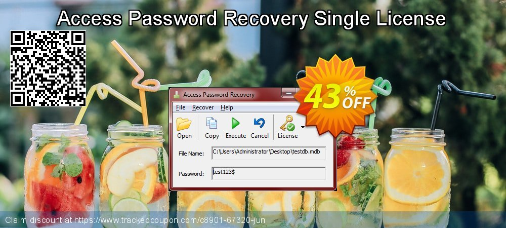 Access Password Recovery Single License coupon on Mid-Autumn Moon discounts